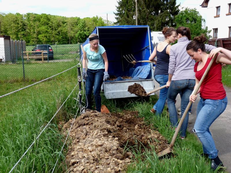 Materialbeschaffung und Gartenaufbau